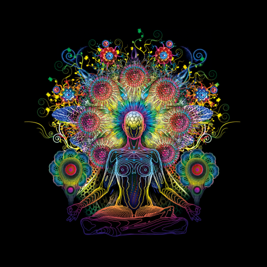 psychedelicmeditation