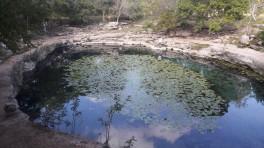 Cenote Xlacah ruta Puuc Yucatan Mexico